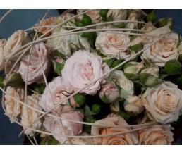 Выставка Flower Expo Ukraine г.Киев