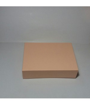 Коробка на магнітах  22*16*5,5 см лососева (Clariana)
